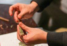 grind weed