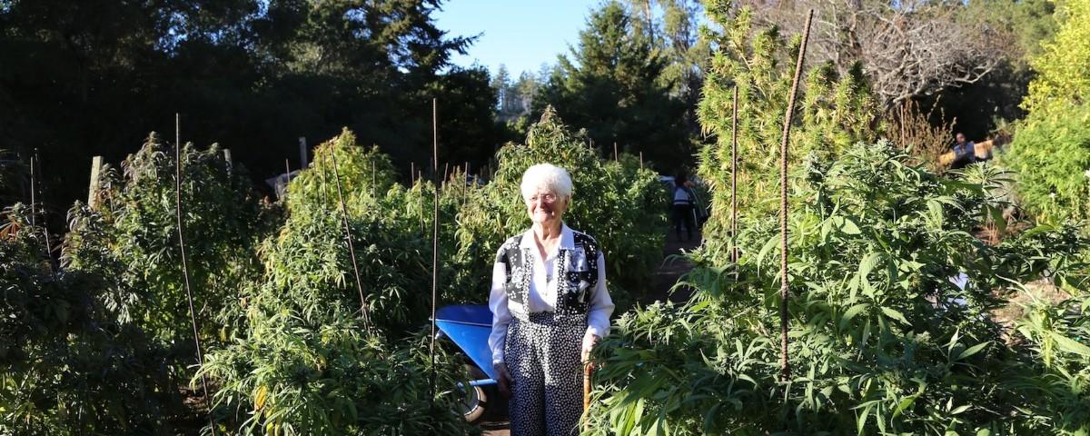 grandma-nonna
