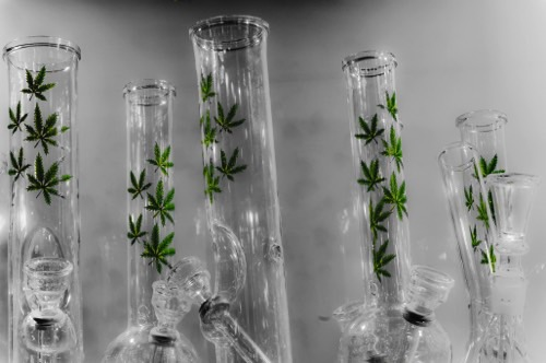Water Pipes with weed with smoke behind bongs in marijuana shop as souvenirs