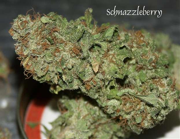 Schnazzleberry Weed