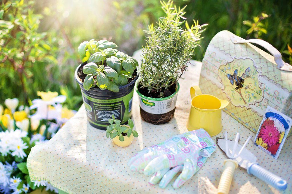 gardening high