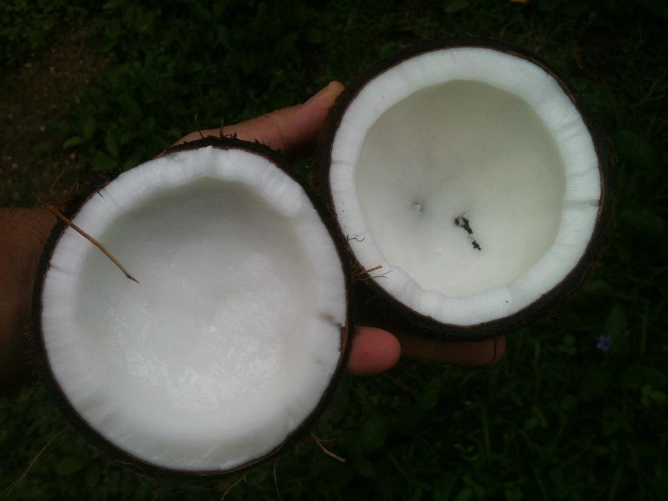 coconut oil stoner tools