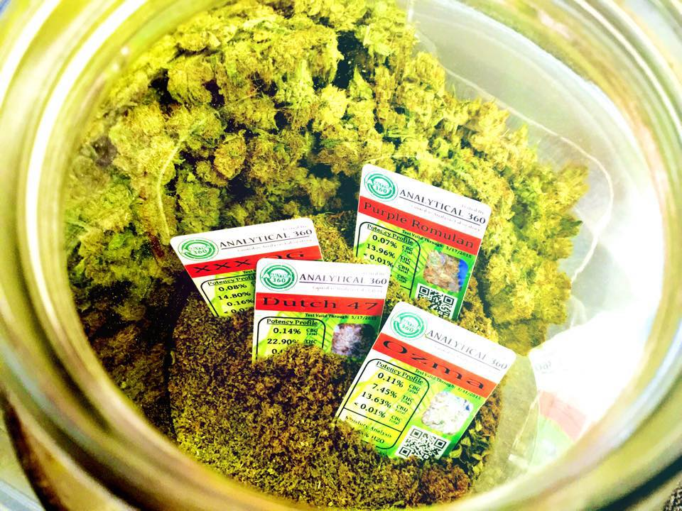 organic-weed