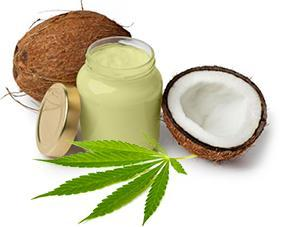 cannabis with coconut oil